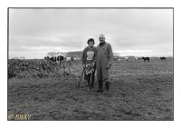 Eleveurs de bovins, Laplaigne, Belgique, 1986 - argentique