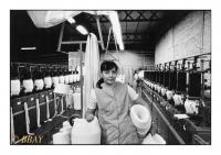 Ouvrière chargée de la préparation des fibres à teinter, Teinturerie de Dottignies, Dottignies, Belgique, 1986 - argentique